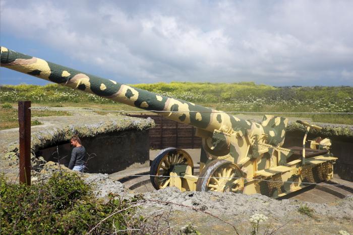 プレインモント Pleinmont Gun